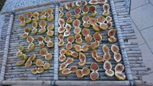sundried figs